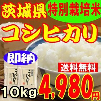即納OK29年度産茨城県産コシヒカリ10kg4,980円...