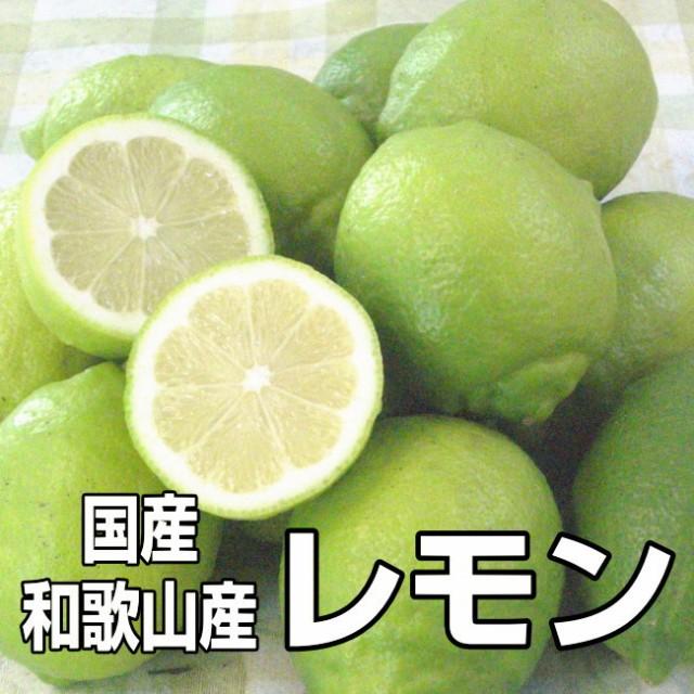 【送料無料】国産(和歌山産)グリーンレモン/レ...