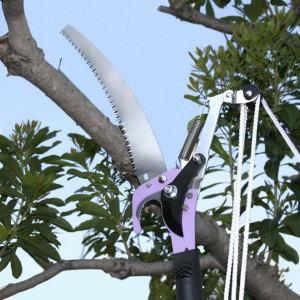 ★「5メートルの高さまで届く高枝切りハサミ 1本...