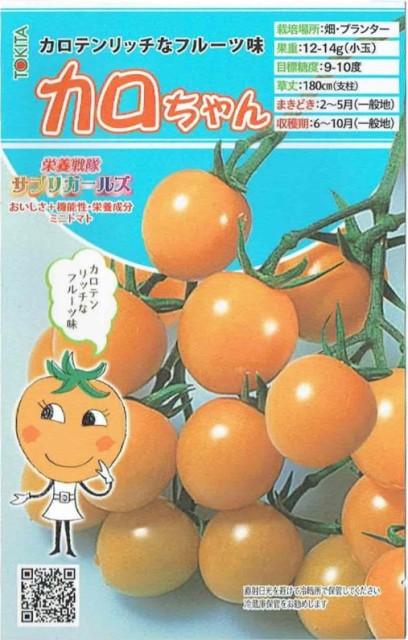 トキタ種苗 ミニトマト カロちゃん 約8粒【郵...