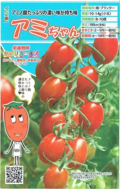 トキタ種苗 ミニトマト アミちゃん 約8粒【郵...