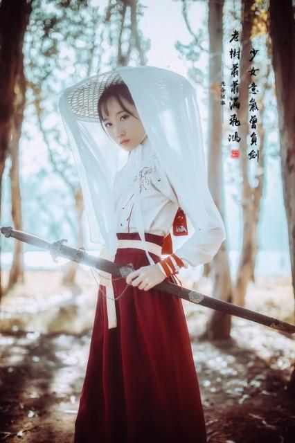 チャイナ服類似品 衣装 妖精 ドレス スカート 刺...
