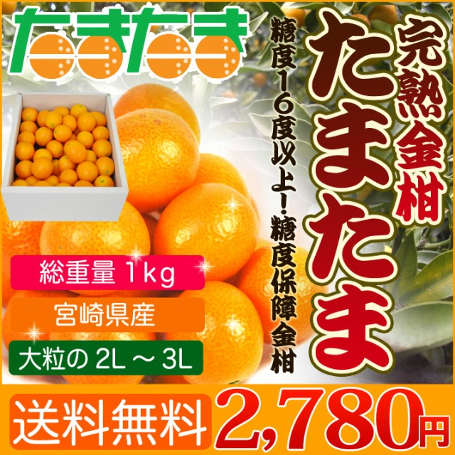 送料無料 宮崎県産 完熟金柑 たまたま 1kg 糖度セ...