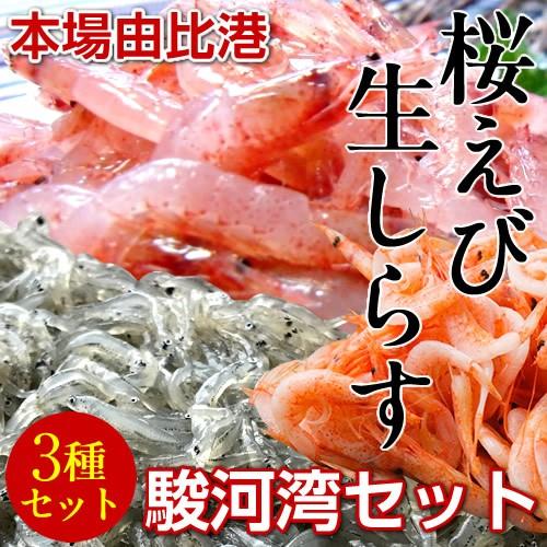 静岡県由比港発 駿河湾ふるさと3種セット 生桜え...