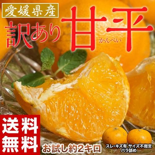 《送料無料》愛媛県産 スレ・傷有・サイズ不揃い...