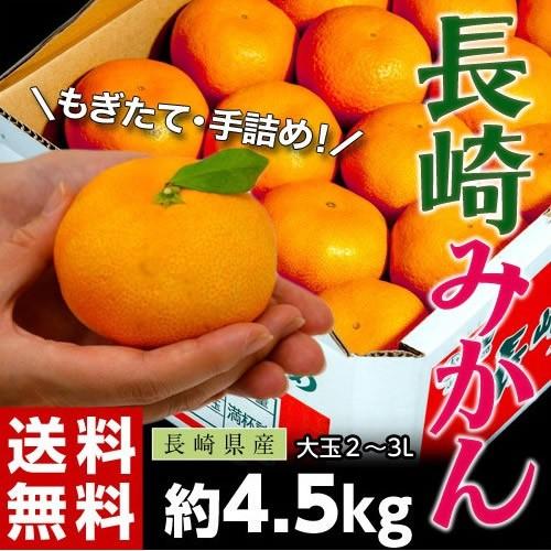 《送料無料》大玉手詰め『長崎みかん』 2〜3L ...