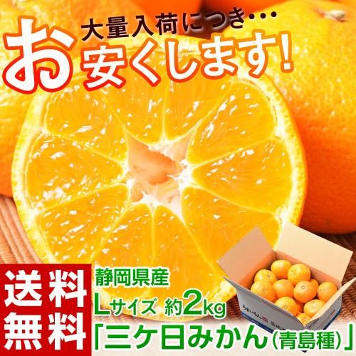 《送料無料》静岡県産 三ケ日みかん(青島) 優・...