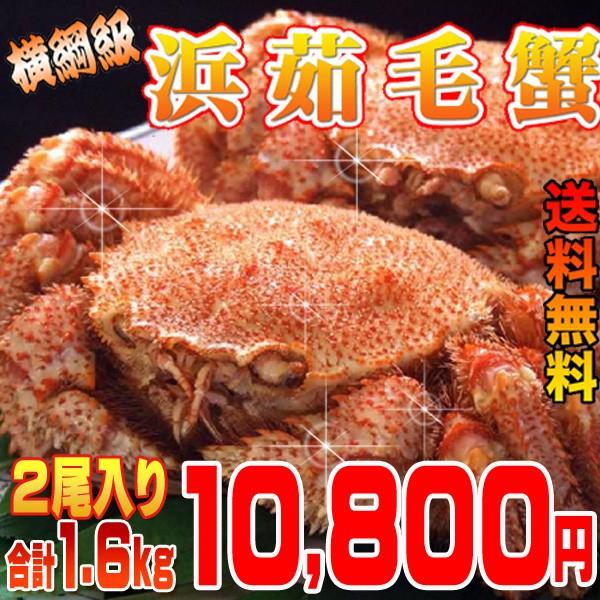 【送料無料】福毛蟹横綱級2尾入り 合計1.6kg  /...