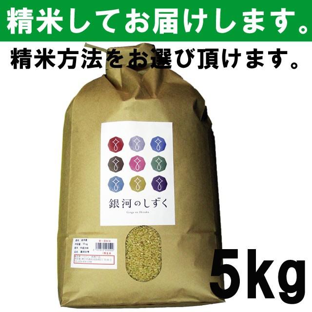 【平成29年度産】 岩手県産 銀河のしずく 一等...