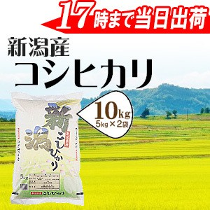 新潟県産コシヒカリ10kg(5kg×2袋)  29年産 送料...
