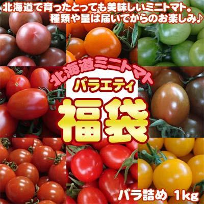 北海道産 ミニトマト 福袋 バラ詰め 1kg 送料無料...