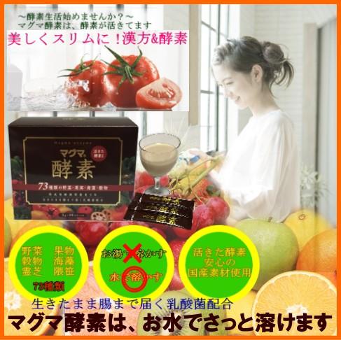 マグマ 酵素 3g×30スティック 旬の野菜・果実・...