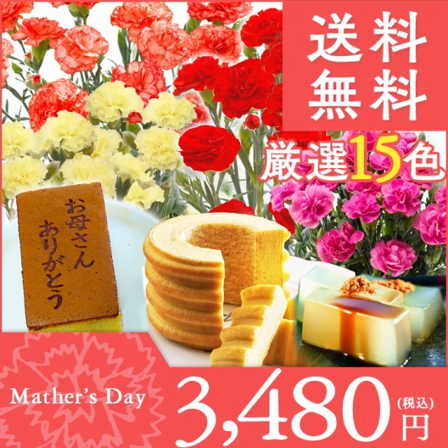 【早割中】母の日 4号カーネーションとお菓子のセ...