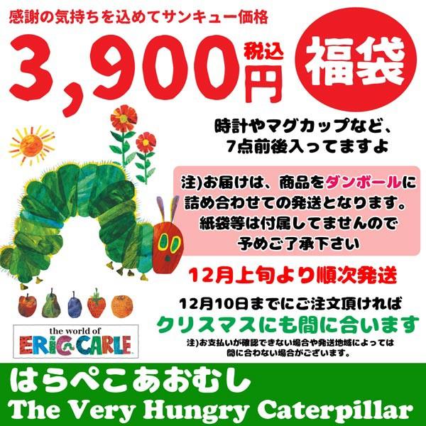 AM-FUKU-3900/のあ/【はらぺこあおむし】2018...