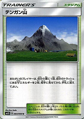 ポケモンカードゲーム サン&ムーン 064/066 テン...