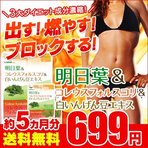 期間限定699円SALE 明日葉&コレウスフォルスコ...