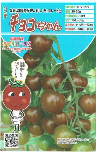 トキタ種苗 ミニトマト チョコちゃん 約8粒【...