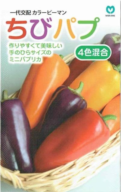 丸種 カラーピーマン ちびパプ4色混合 各色3...