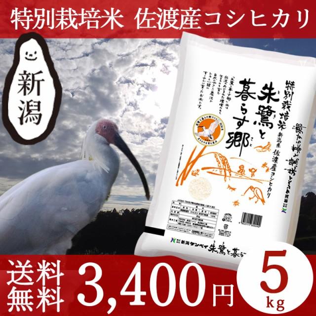米 お米 5kg 特別栽培米 新潟 佐渡産コシヒカリ 2...