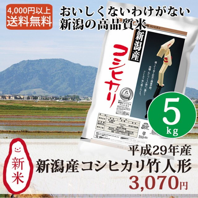 米 お米 5kg 新潟 新潟産コシヒカリ 29年産 こし...