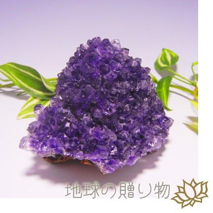純粋な母岩付◆宝石品質アメジスト・クラスター36...