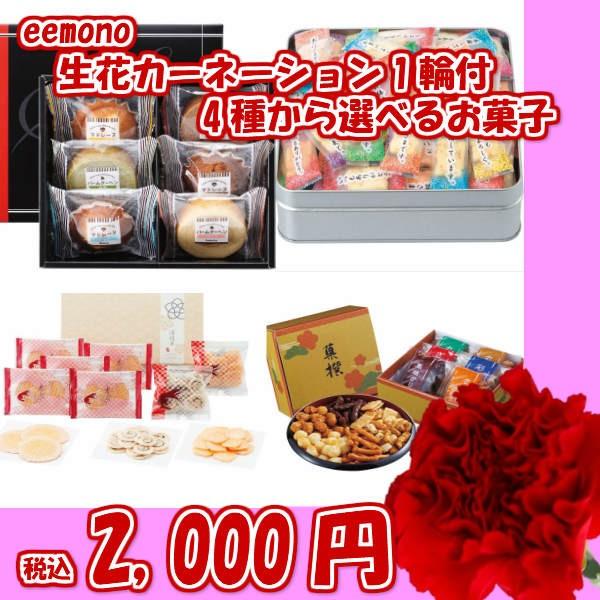 選べるお菓子4種&カーネーション付/おかき/焼き...