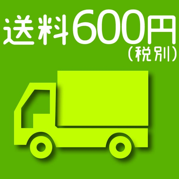 送料 600円(税別)