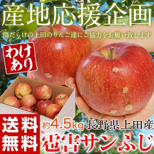 《送料無料》【産地応援】長野県上田産 スレ・キ...