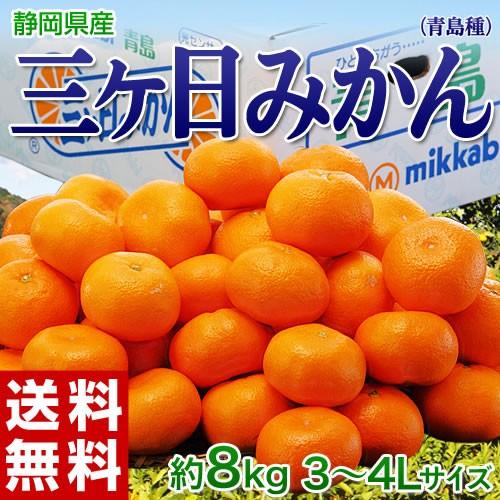みかん 送料無料 静岡産 三ヶ日みかん(青島種) 3〜4Lサイズ 約8kg