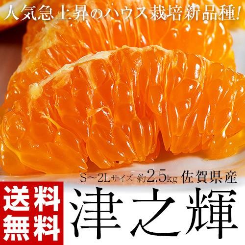 《送料無料》佐賀産 「津之輝(つのかがやき)」 ...