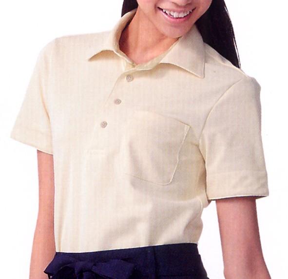 APK235-C64-C65 ニットシャツ(配色あり) 全2...