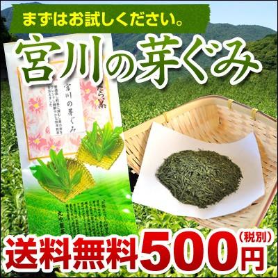 【丸中製茶 緑茶】宮川の芽ぐみ100gメール便...