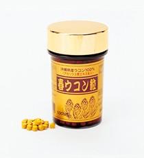春ウコン粒100g(100mg×1000粒)/美容 健康 サプ...