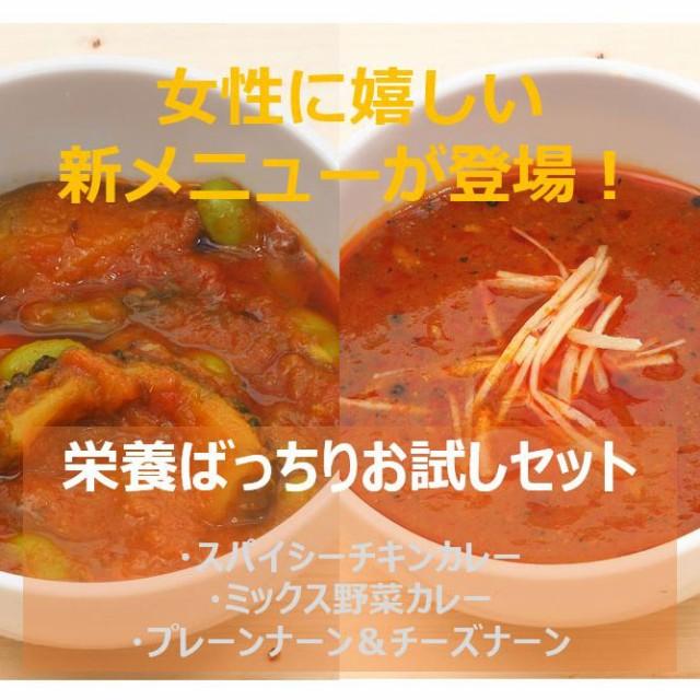【ナーン付き】スパイシーチキン&ミックス野菜カ...