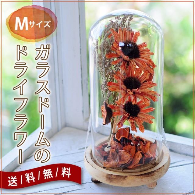 ガラスドームのドライフラワー Mサイズ 送料無料