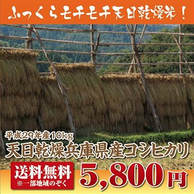 【29年産】【送料無料】天日乾燥兵庫県産コシヒカ...