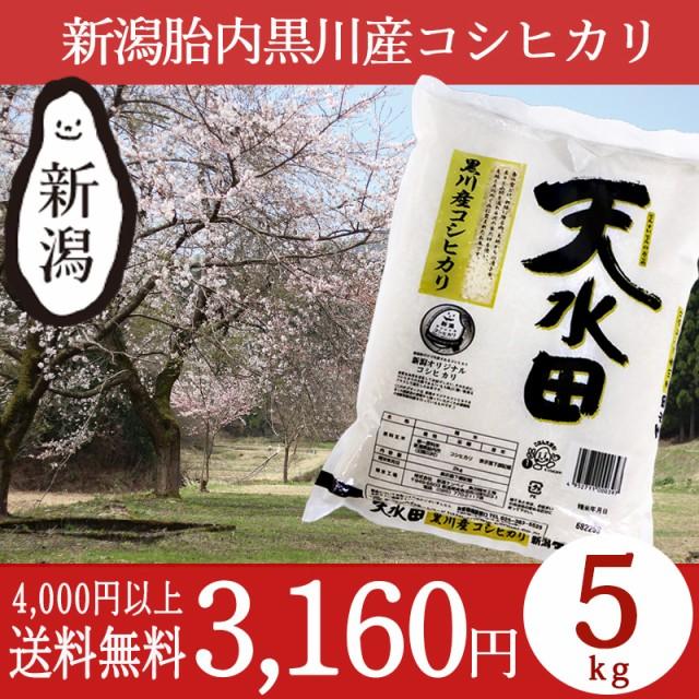 米 お米 5kg 新潟 黒川産コシヒカリ 29年産 こし...