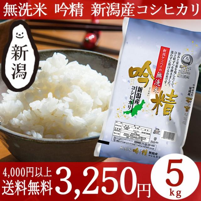 米 お米 5kg 無洗米 新潟 コシヒカリ 29年産 こし...
