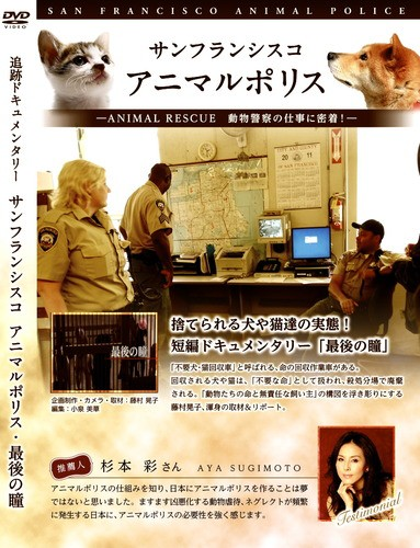 【DVD・ドキュメンタリー】 サンフランシスコ ア...