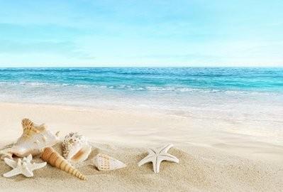 「砂浜」の画像検索結果