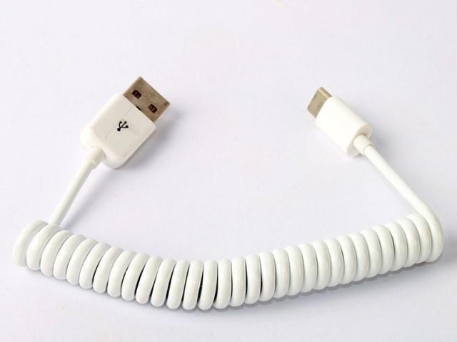クルクル 伸縮 バネ USB Type C オス to USB 延長...