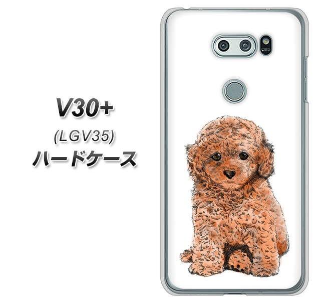 au isai V30+ LGV35 ハードケース / カバー【YJ1...