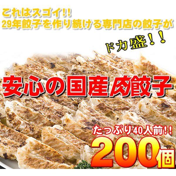 〔ワケあり〕安心の国産餃子200個!!40人前!! ...