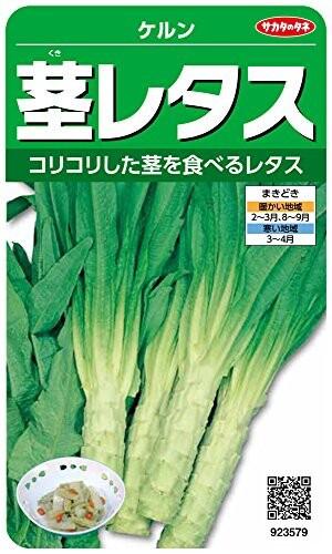 サカタのタネ 実咲野菜3579 茎レタス ケルン 0092...