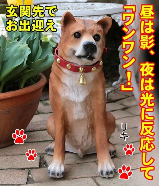 吠える置物 柴犬 玄関 犬 置物 玄関に犬の置物 犬...