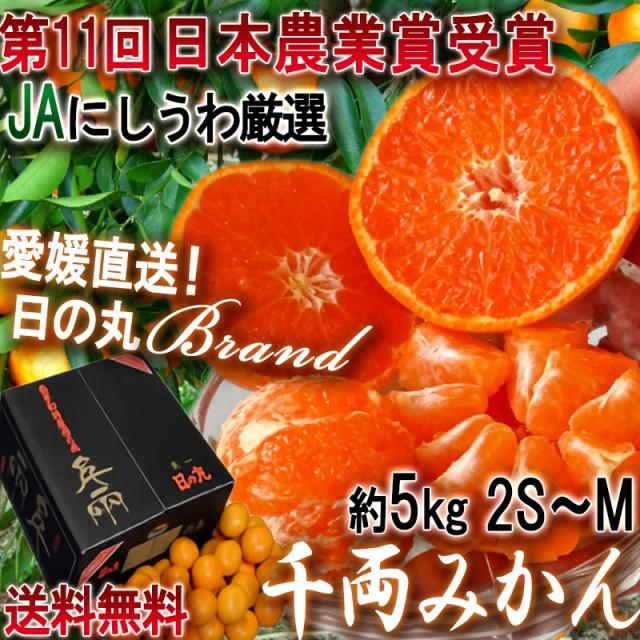 産地直送 日の丸千両みかん 約5kg 2S〜Mサイズ 愛...