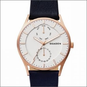 SKAGEN スカーゲン 腕時計 SKW6372 メンズ Holst ...