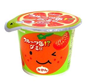 カバヤ フルーツ缶グミ 50g【イージャパンモー...