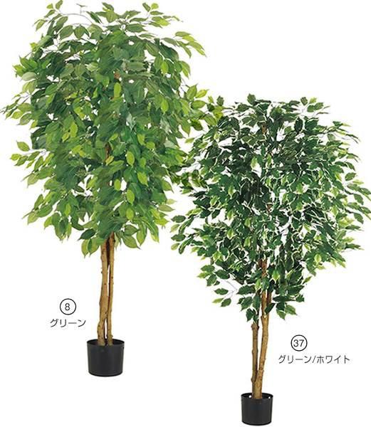 造花 フラワー 観葉植物  150cm フィカスツリー(...