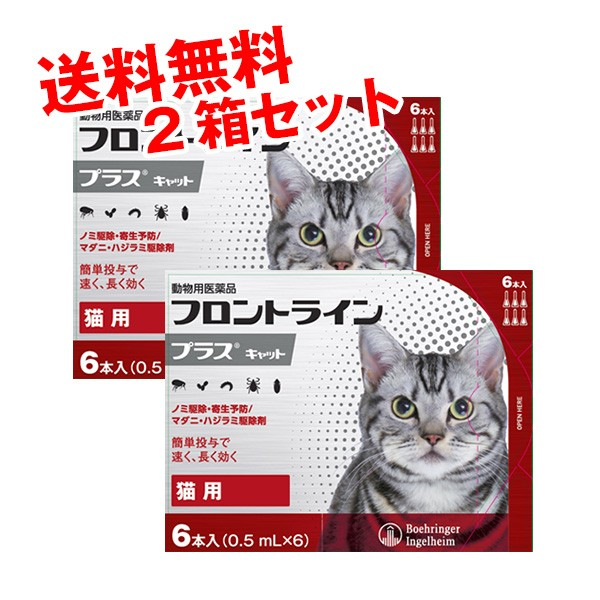 【動物用医薬品】フロントラインプラス猫用 1箱6...